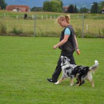 Wesley Training